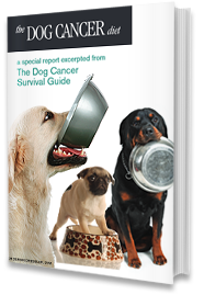 DogCancerDiet Book Cover